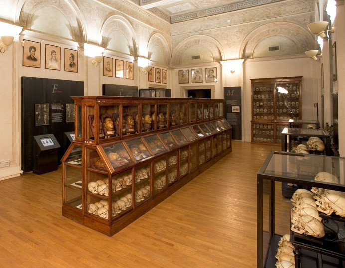 Le sale del museo di Antropologia Criminale