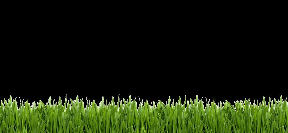 grass-clipart-golf-11.png