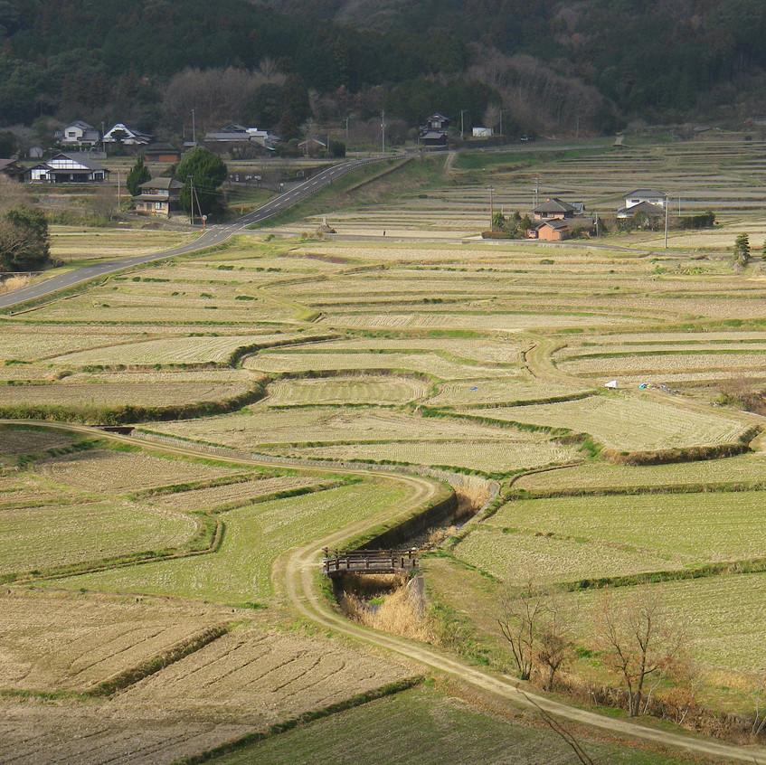 中世の荘園風景