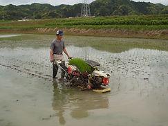 2008_0702やぎ農園20080015.JPG