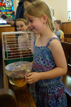 Two goldfish made it through the service