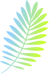 Colorful Branch_edited.png
