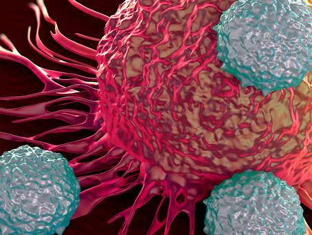 Mecanismo ligado ao metabolismo celular ligado à carcinogênese do neuroblastoma