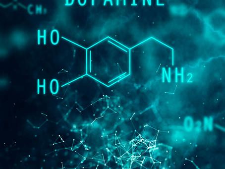 Identificado circuito neural regulador da libido modulado pela dopamina