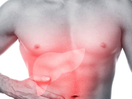 Produção intestinal de gordura específica protege o fígado contra inflamação