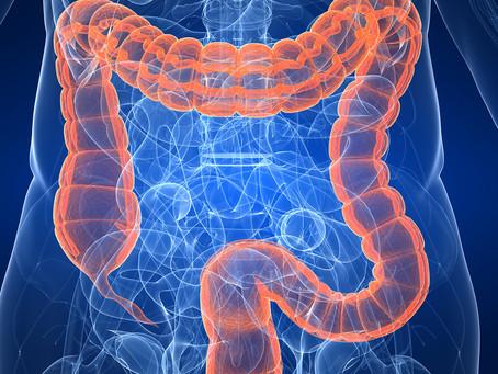 Mais sobre o link entre disbiose intestinal e doenças neurodegenerativas