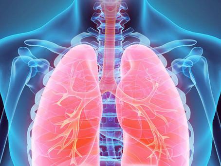 Inteligência artificial pode ajudar a detectar o risco de câncer de pulmão