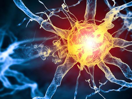 Identificado o mecanismo da epilepsia causada por mutação rara