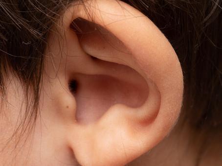 Estudo sugere ser possível regenerar o ouvido interno