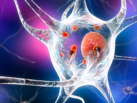 Composto encontrado em cosméticos pode reverter danos da doença de Parkinson