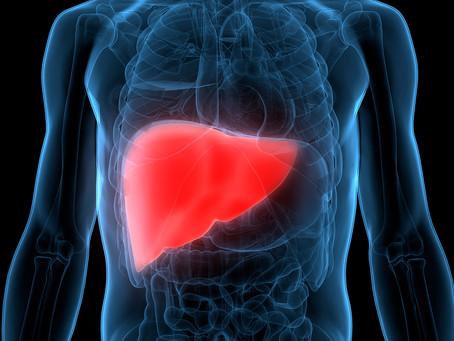 Estudo desenvolve estratégia para tratar a fibrose hepática