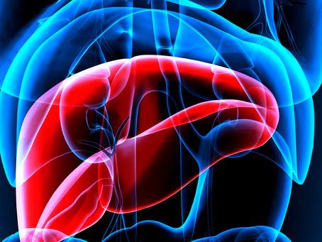 Identificado gene com função crítica na formação e função do pâncreas