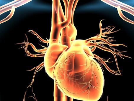 Estudo avalia método não farmacológico para tratamento da hipertensão arterial