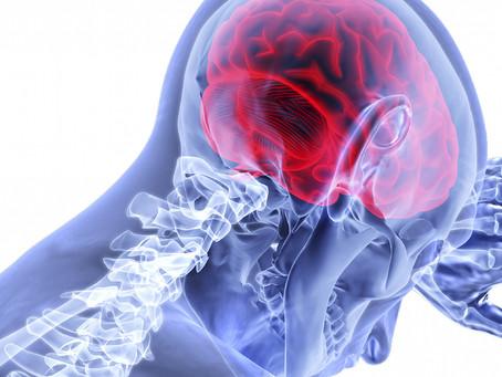 Estudo desvenda papel do microbioma na gravidade do acidente vascular cerebral
