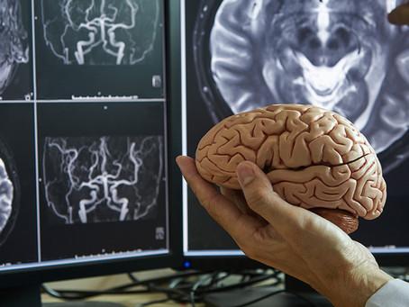 Identificado mecanismo envolvido na resistência cerebral à hipóxia