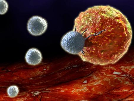 Estratégia celular promete tornar a imunoterapia CAR mais inteligente e eficaz