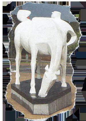 paard_300.png