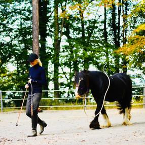 Fabiana Pieroni e il suo Pony House