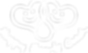 logo_HH_Czech_bila.png
