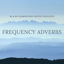 frequency adverbs.jpg
