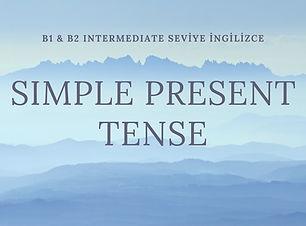 Simple Present Tense.jpg