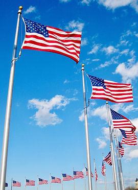 usa-flags-WGSPCWH.jpg