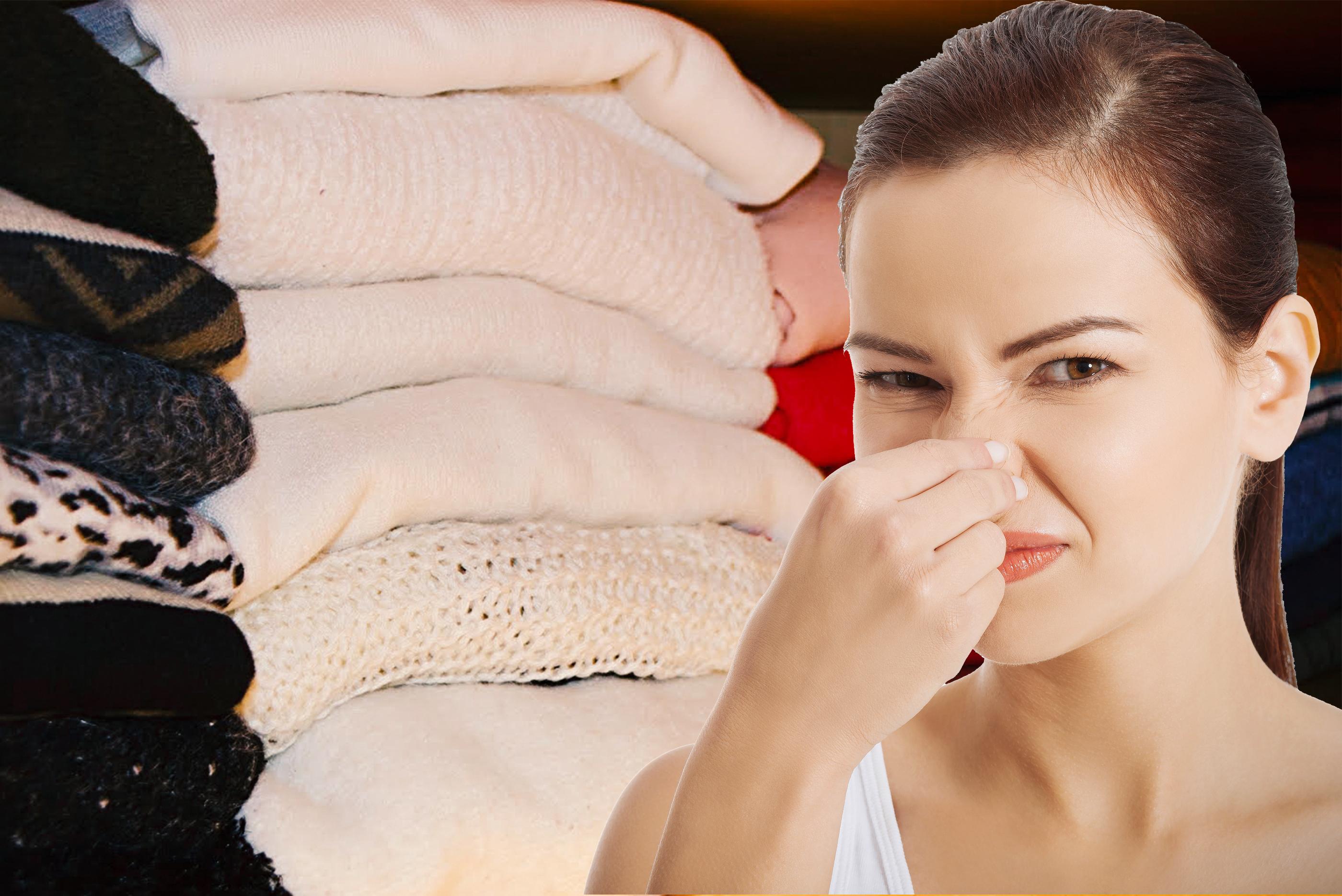 cheiro de mofo nas roupas