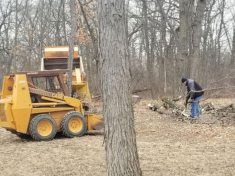 trees,tree,double,k,sevice,services,remevol,remeval,wisconsin,milwaukee,racine,kenosha,wi,wisconsin,us,united,states,storm,damage,landscaping,lawn,lawns,roots,sewage,pipes,plugged,pipe,piping,yard,yards,property,insurance,coverage,landscapers,compny,companies,angies,list,home,roof,garage,down,fallen,illinois,il