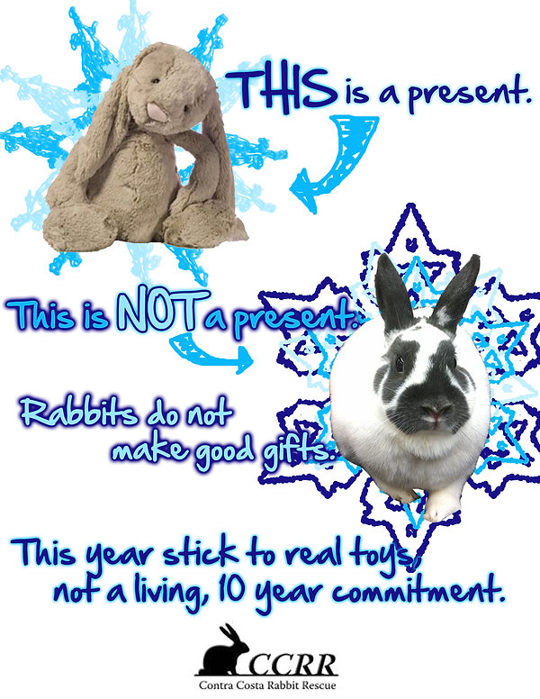2014 Christmas.jpg