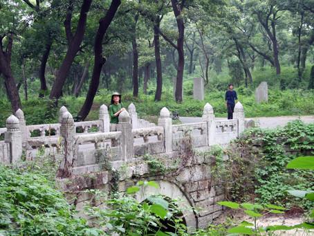 Entierros Verdes: una visita a la tumba y cementerio boscoso de Confucio
