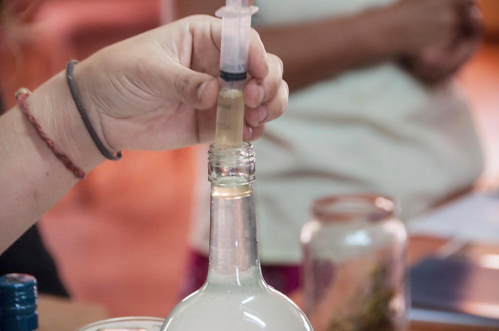 Extracting the Essential Oil ~ Extracción del Aceite Esencial Paul Konomi workshop taller