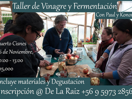Taller de Vinagre y Fermentación / Vinegar & Fermentation Workshop
