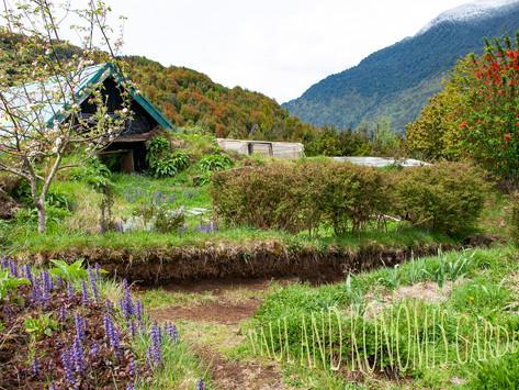 The House in Spring / La Casa en Primavera