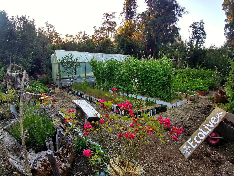 EcoLive Garden