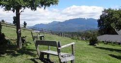 Terrazas bench web