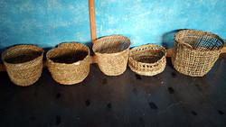 Mayorguita-roxana basket