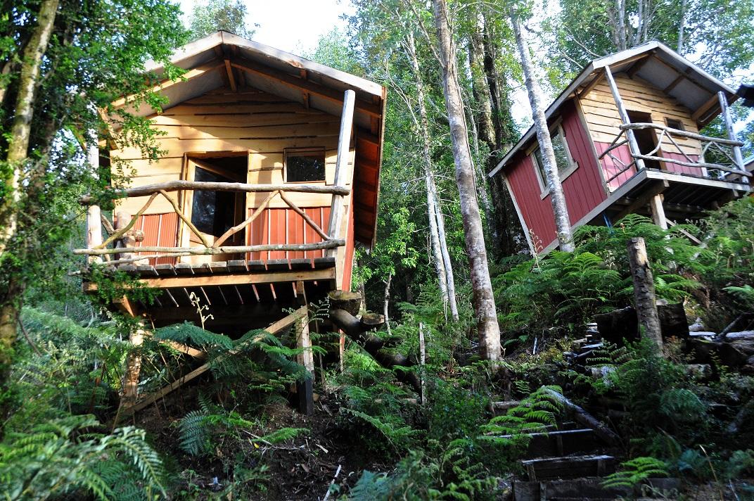 Leo cabins web