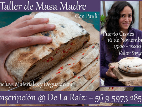 Taller de Masa Madre ~ Sour Dough Workshop