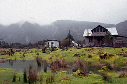 MARI HOUSE painting