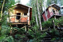 Leo cabins mini web