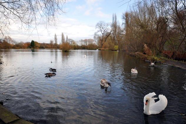 King George's Pond, Altrincham