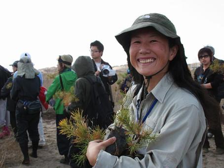 El maravilloso festival mundial de plantación de árboles