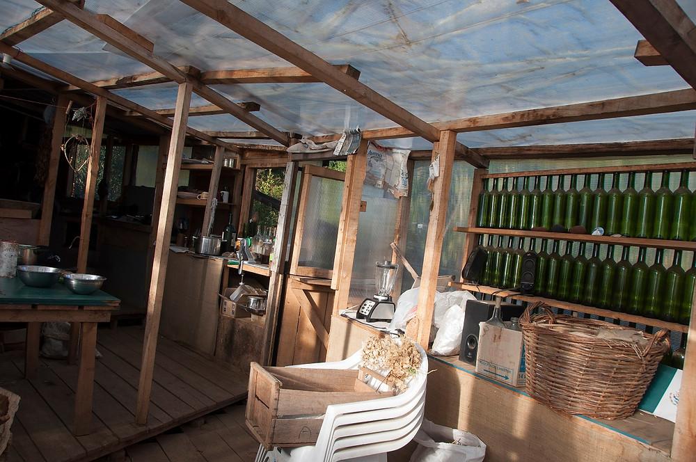 The Conservatory/Plant Nursery