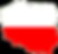 Polska firma polski kapitał