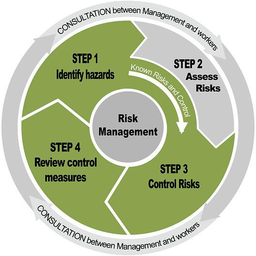 Risk Assessment Sequence WheelLIL.jpg
