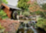 HobartJapaneseGarden.jpg