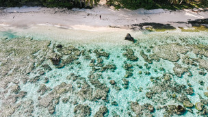 Pilot Spotlight: Kori Elektra - The Earthly Vagabond in the American Samoa