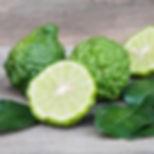 Lima De Kaffir... ingrediente básico en