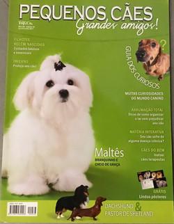 Revista Peq. Cães Grandes Amigos