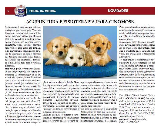 Cinomose Jornal Folha da Mooca
